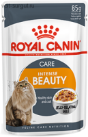 Royal Canin Intense Beauty (в желе)